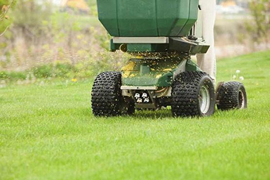 DSC Solutions professional lawn care services